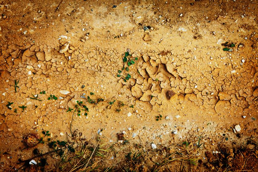 Voyages & Food: Cyclades terre craquelée et végétation Julie MECHALI